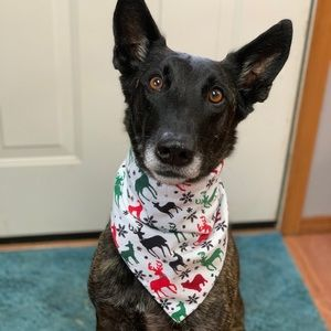 Handmade| Reversible Christmas Holiday Dog Bandana